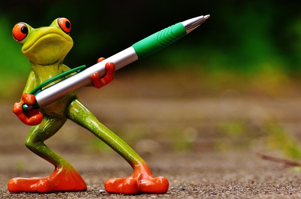 frog-pixabay