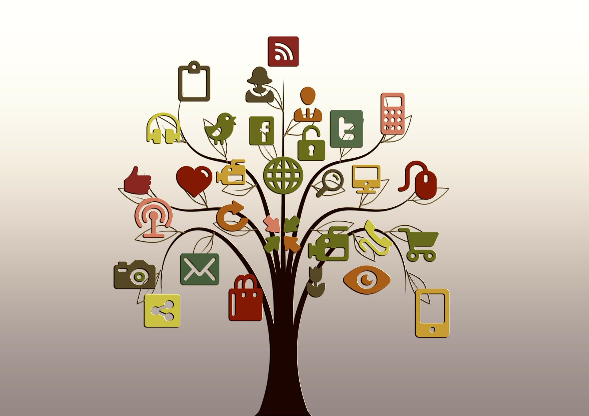 network tree - pixabay.jpg
