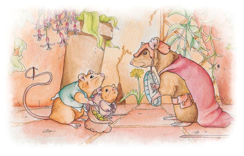 Dom's Mice
